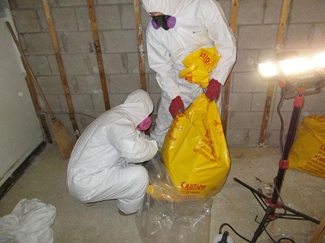 Asbestos and Mould Removal in Tillsonburg