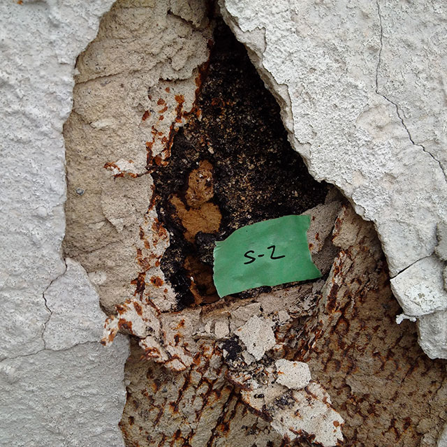 Mould testing and removal in North York, ON